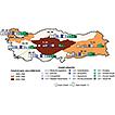 Impact of alien plants in Turkey assessed ...